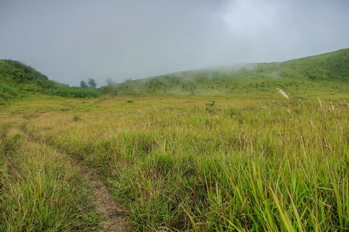 Padang Savanna